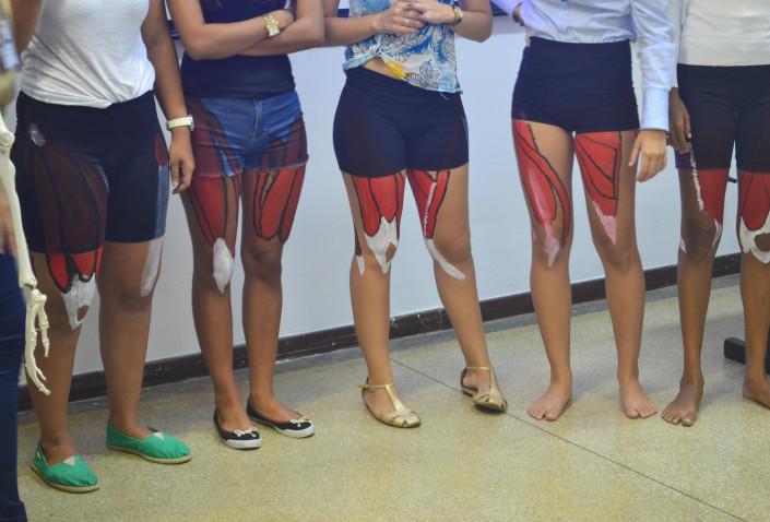 Bahiana-Estudos-Movimento-II-Fisioterapia-03-2016_%286%29.JPG